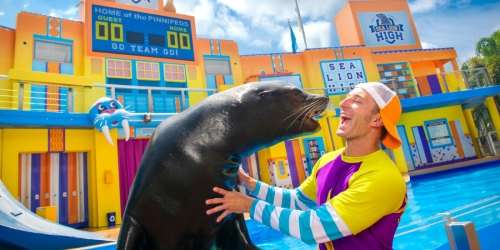 FREE SeaWorld Unlimited Admission Card for Florida Teachers | 3 Single-Day Tickets Only $25.99 Each