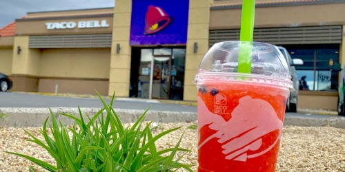 Taco Bell's Watermelon Freeze Drink is BACK (+ How to Snag it For Just $1)