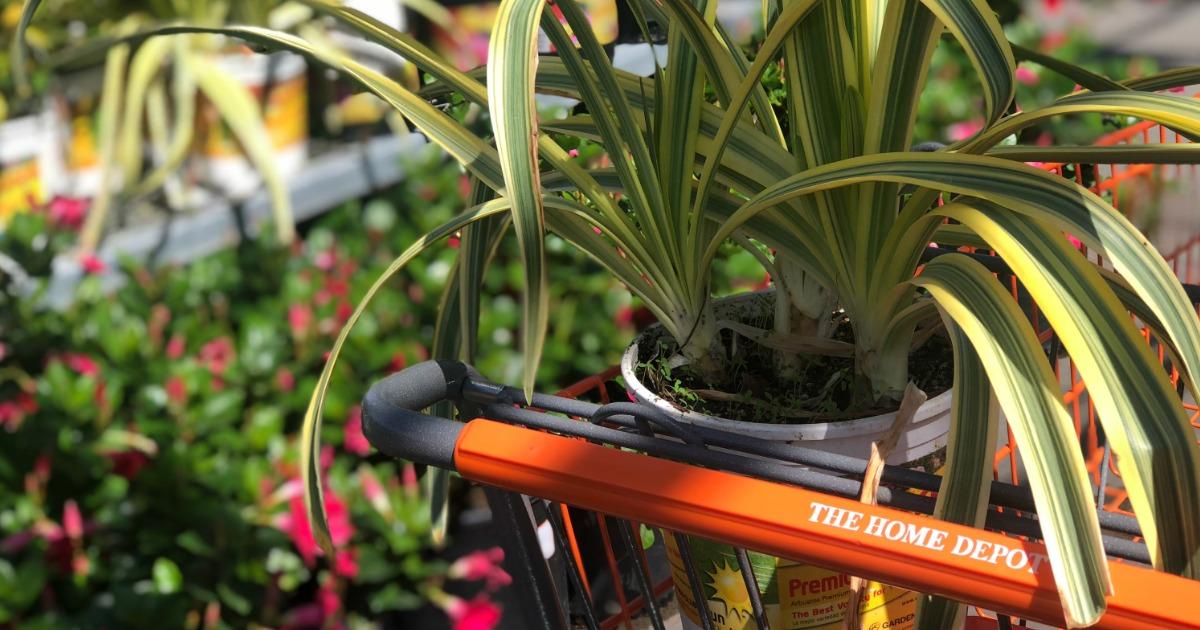 The Home Depot Cart