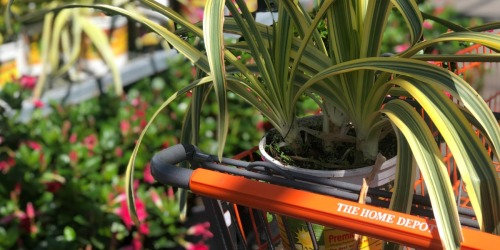 5 Simple Tips for Saving on Your Spring & Summer Projects at The Home Depot