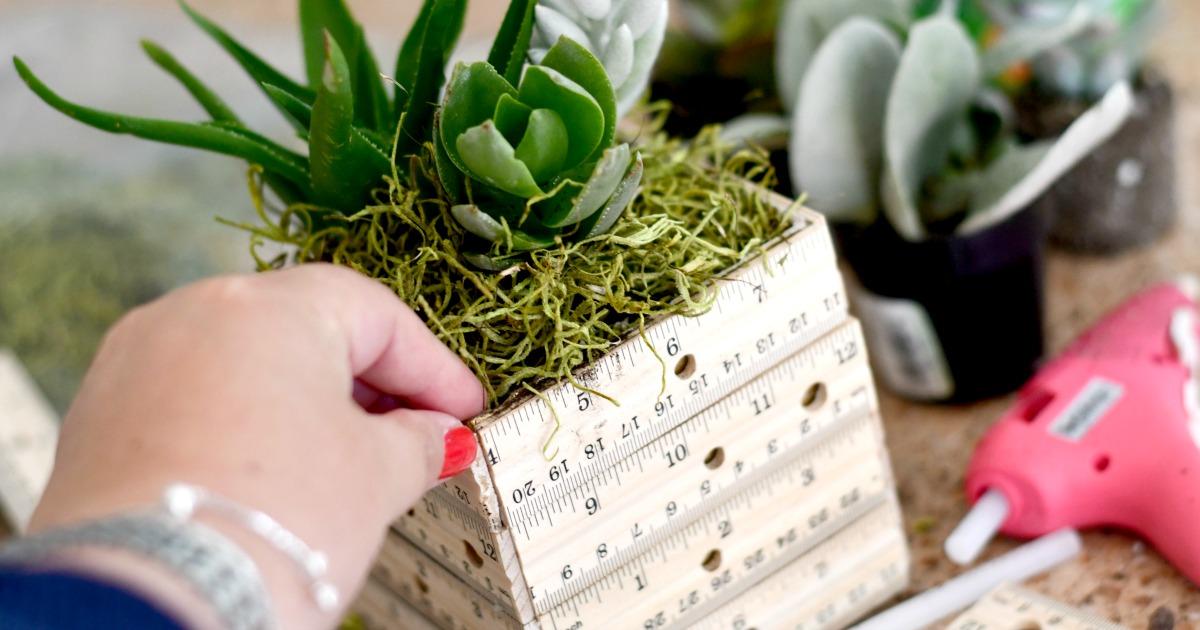 crafting a diy succulent ruler planter as a teacher gift