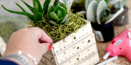 DIY Ruler Succulent Planter (Fun Teacher Appreciation Gift Idea)