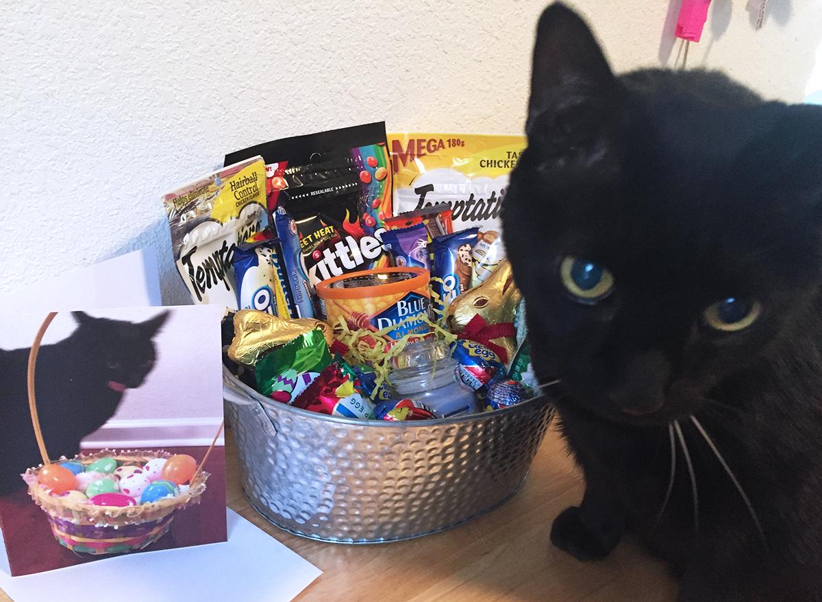 black cat in front of easter basket