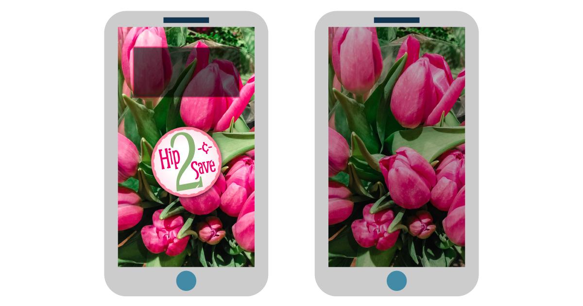 digital wallpapers — tulip flowers smartphone background