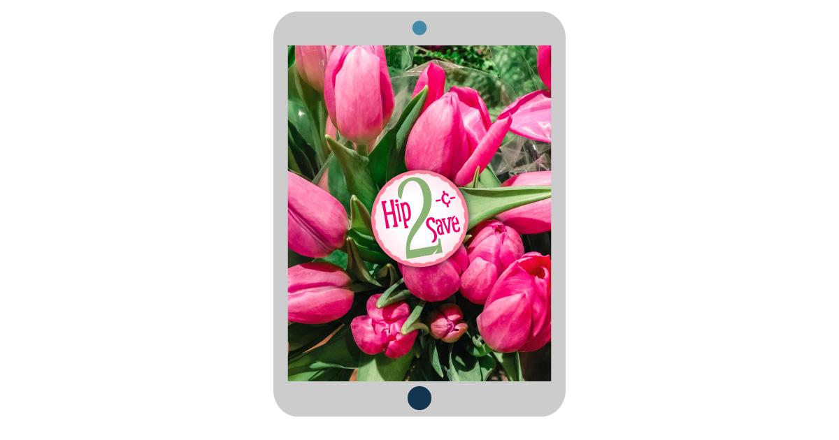 digital wallpapers — tulip flowers tablet background