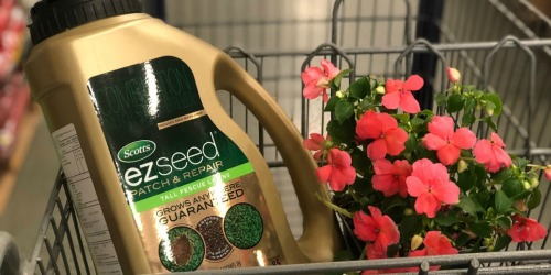 50% Off Scotts EZ Seed Products + Free Shipping
