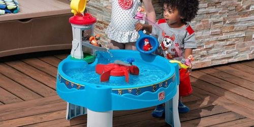 PAW Patrol Water Table Only $37.99 on Zulily (Regularly $50)