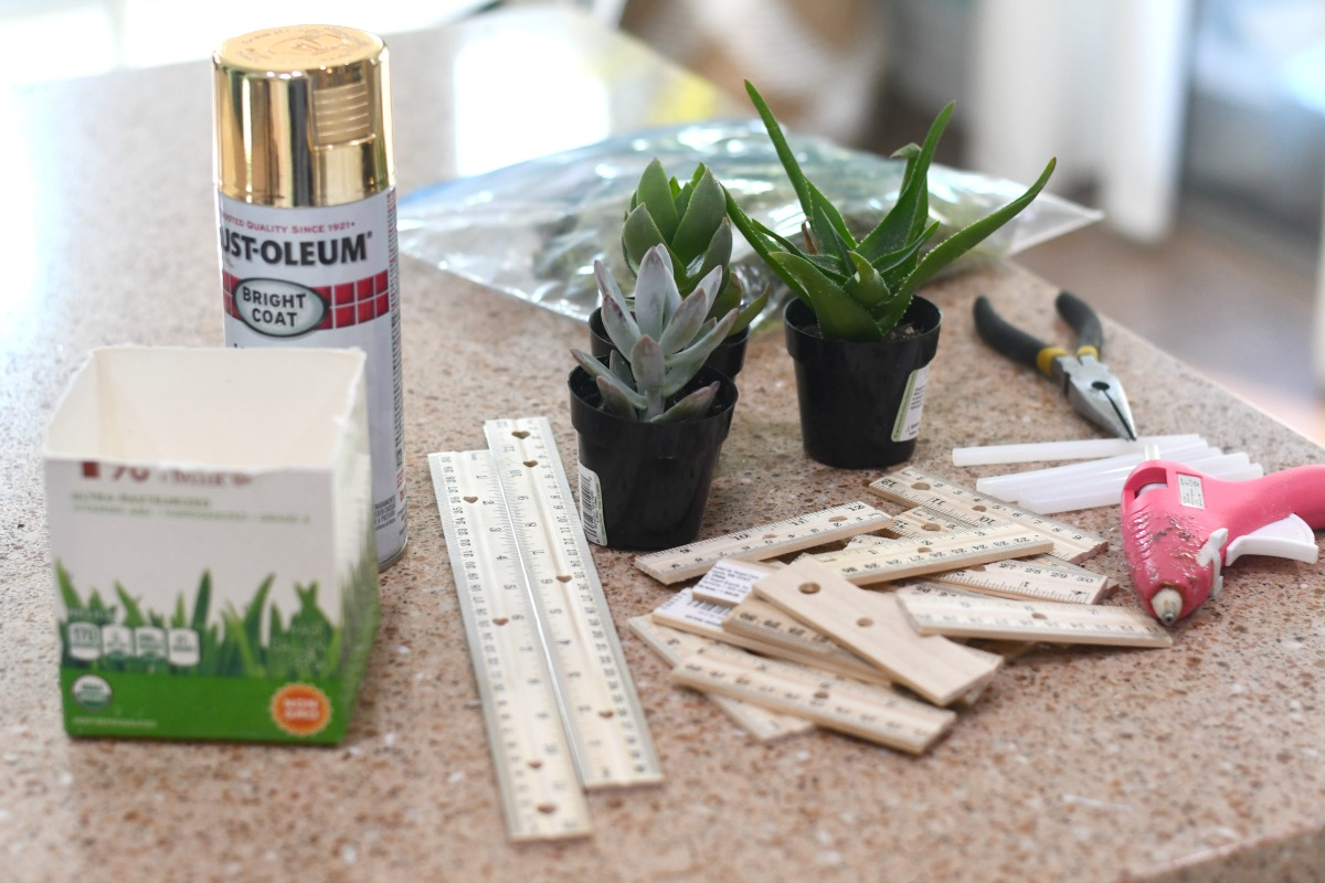 craft supplies to make a succulent planter on the counter