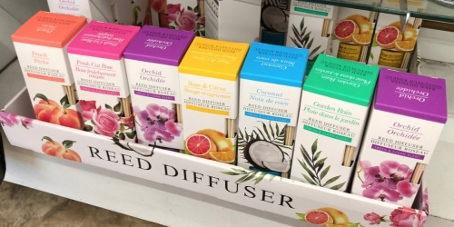 Reed Diffuser Sets Only $1 at Dollar Tree