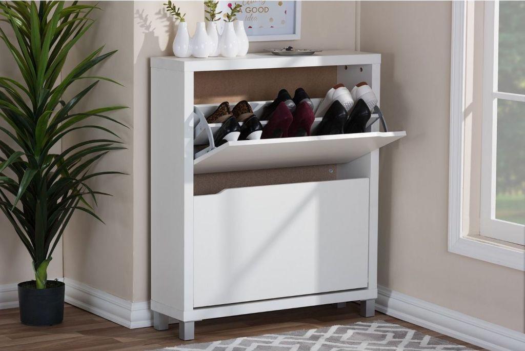 Modern Shoe Storage shelf in entryway
