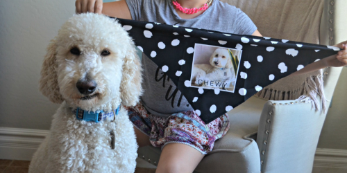 Four FREE Photo Gifts From Shutterfly (Just Pay Shipping)