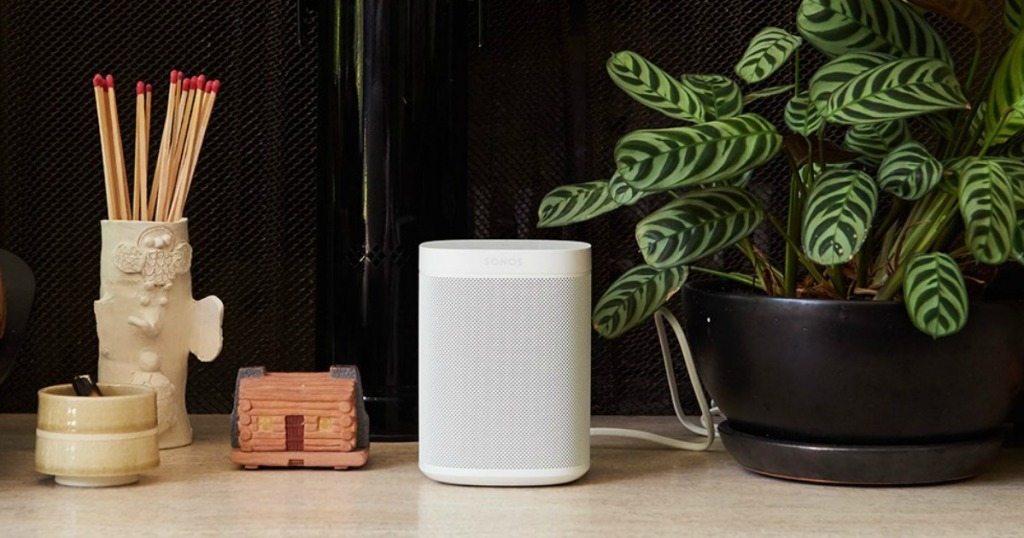 Sonos speaker by plant