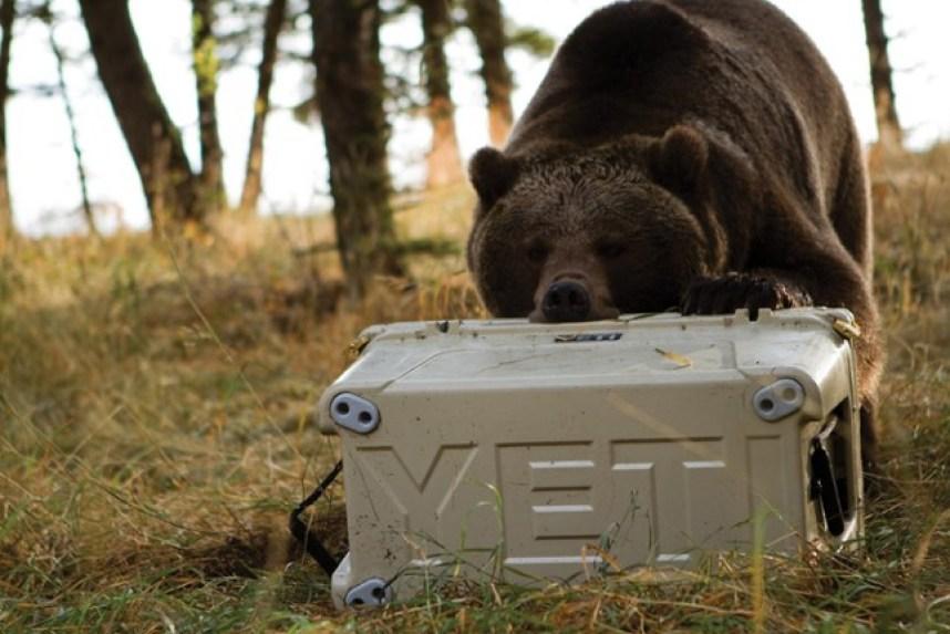 YETI Tundra Cooler Only $224 99 Shipped (Regularly $300) +