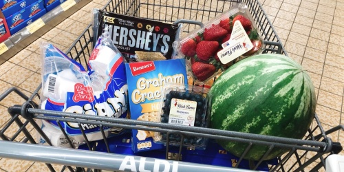 Over 30 ALDI Deals for Your Memorial Day Cookout (S'mores Ingredients, Patriotic Decor & More)