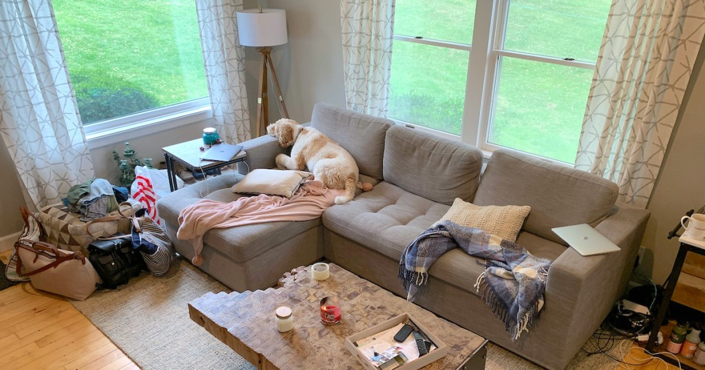 living room with gray sectional and dog looking out windows