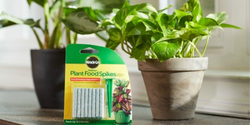 Miracle-Gro Indoor Plant Food Spikes 48-Count Just $2 (Ships w/ $25 Amazon Order)