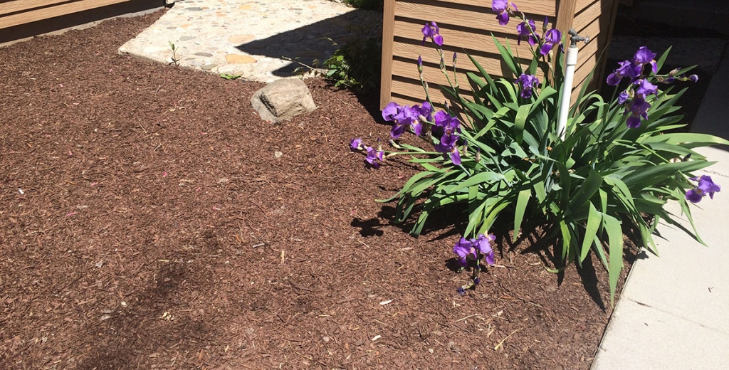 mulch and flower landscaping