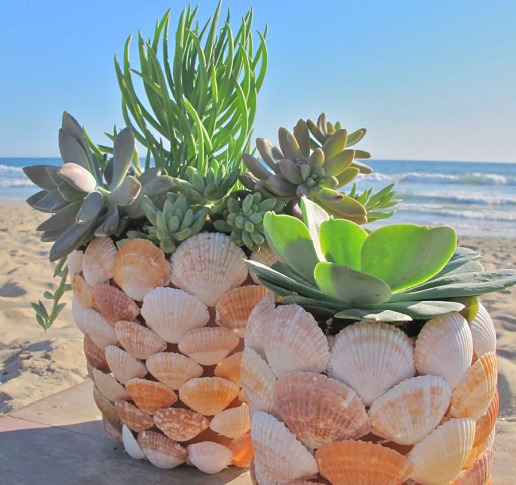 seashell planters from billabong