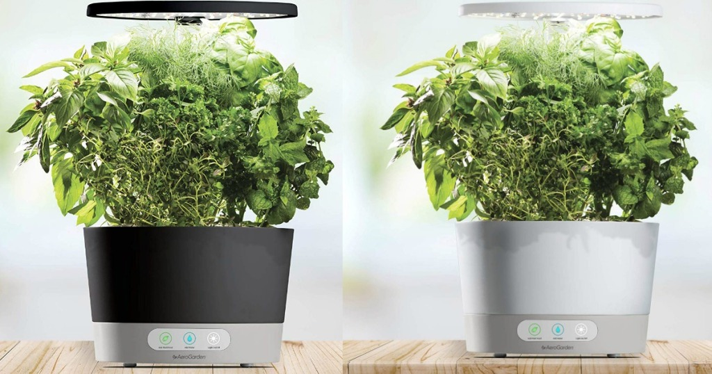 AeroGarden Harvest Elite 360 sitting on a counter