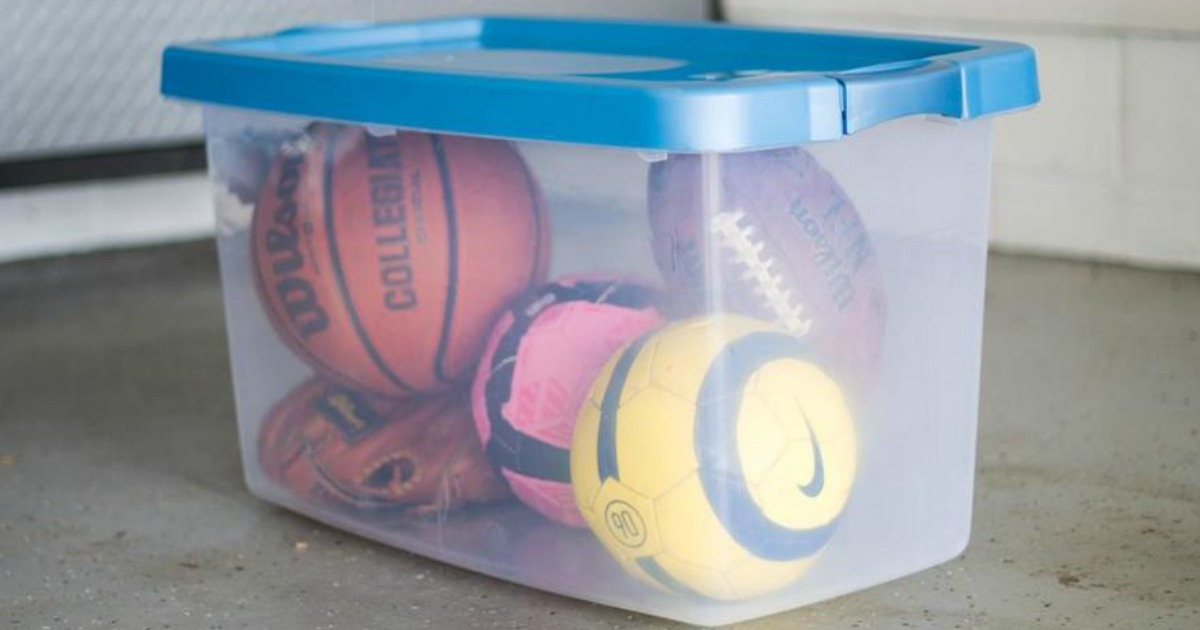 Tote with sports balls
