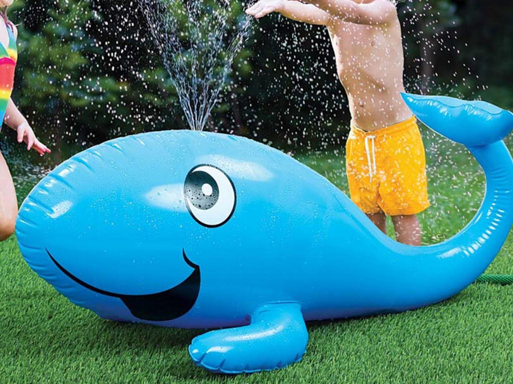 Etna Whale Sprinkler