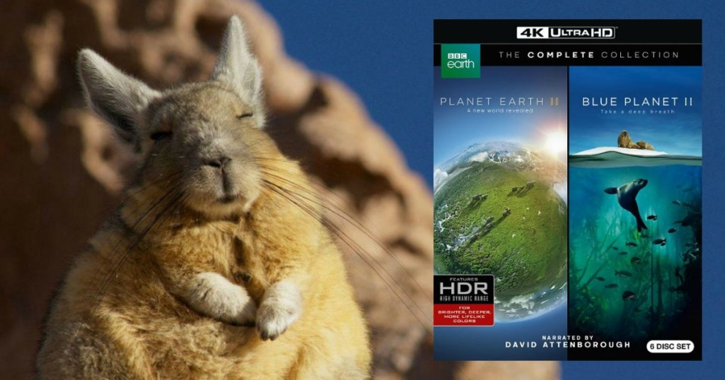 fat rabbit with picture of Planet Earth II Blue Planet II 4k UHD Set