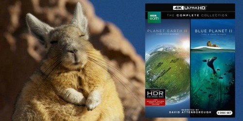 Planet Earth II & Blue Planet II 4K Ultra HD Blu-ray Only $33.59 Shipped (Regularly $70)