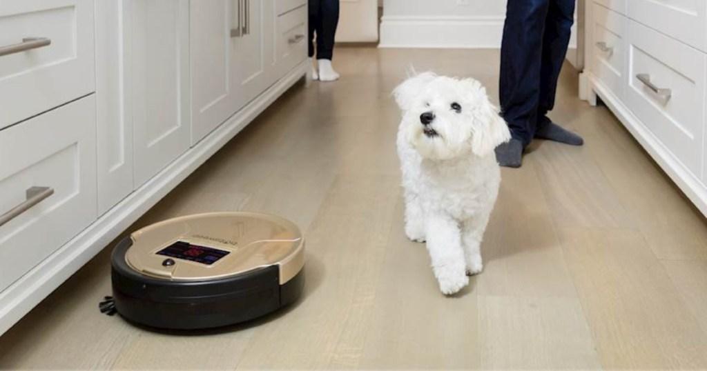 bObsweep - Bob PetHair Self-Charging Robot Vacuum & Mop