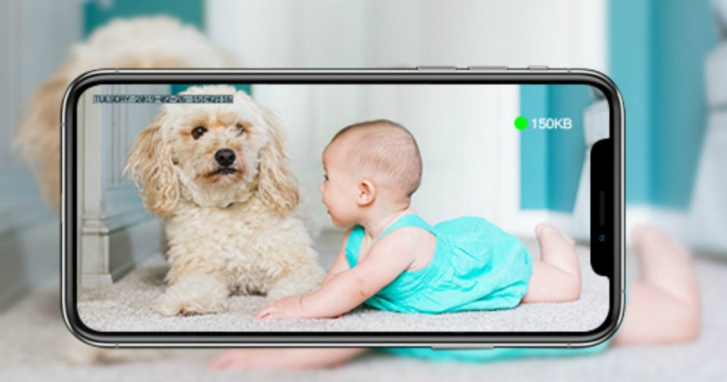 phone recording video of baby and dog