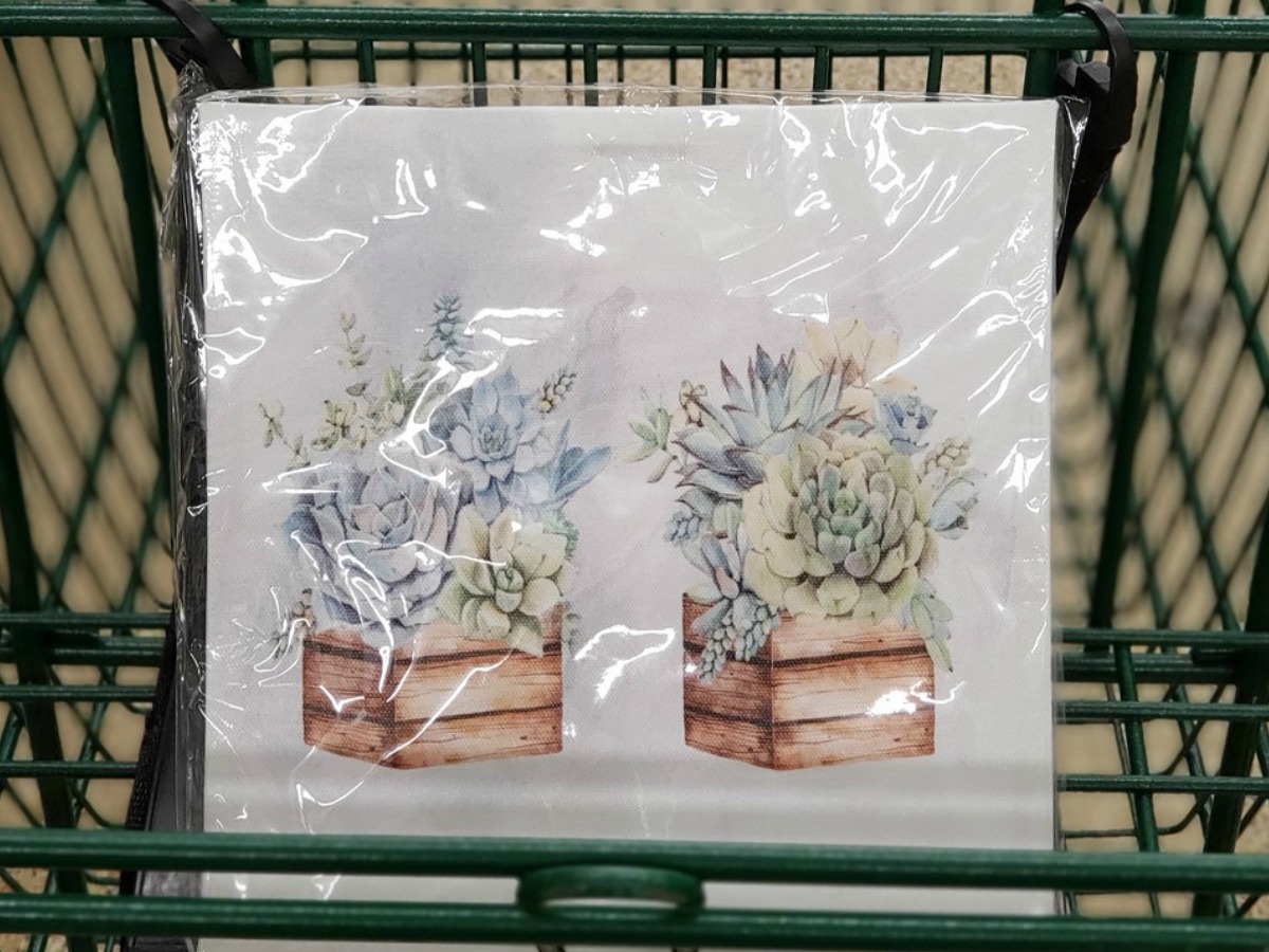 picture regarding Dollar Tree Printable Job Application identified as Greenback Tree Canvas Prints Simply $1 (Succulents, Rates Additional)
