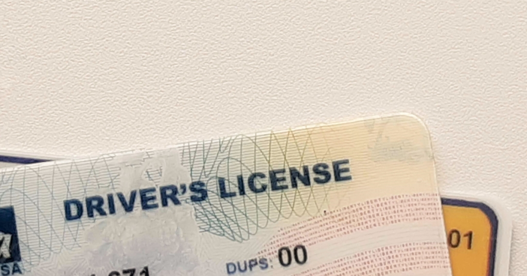 two driver's licenses on a white background