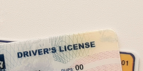 Skip a Trip to the DMV! These 36 States Let You Renew Your Driver's License Online