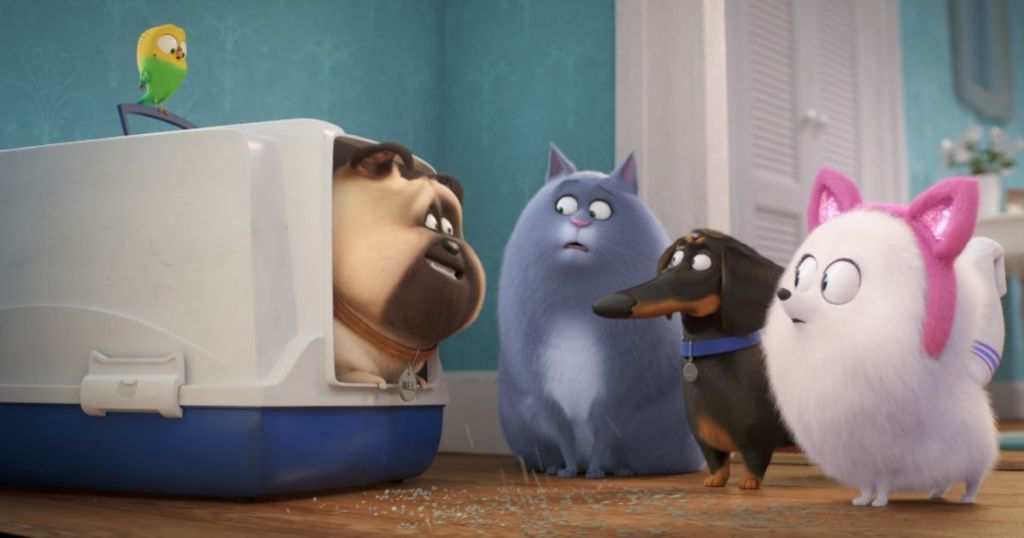 pets looking at each other in movie