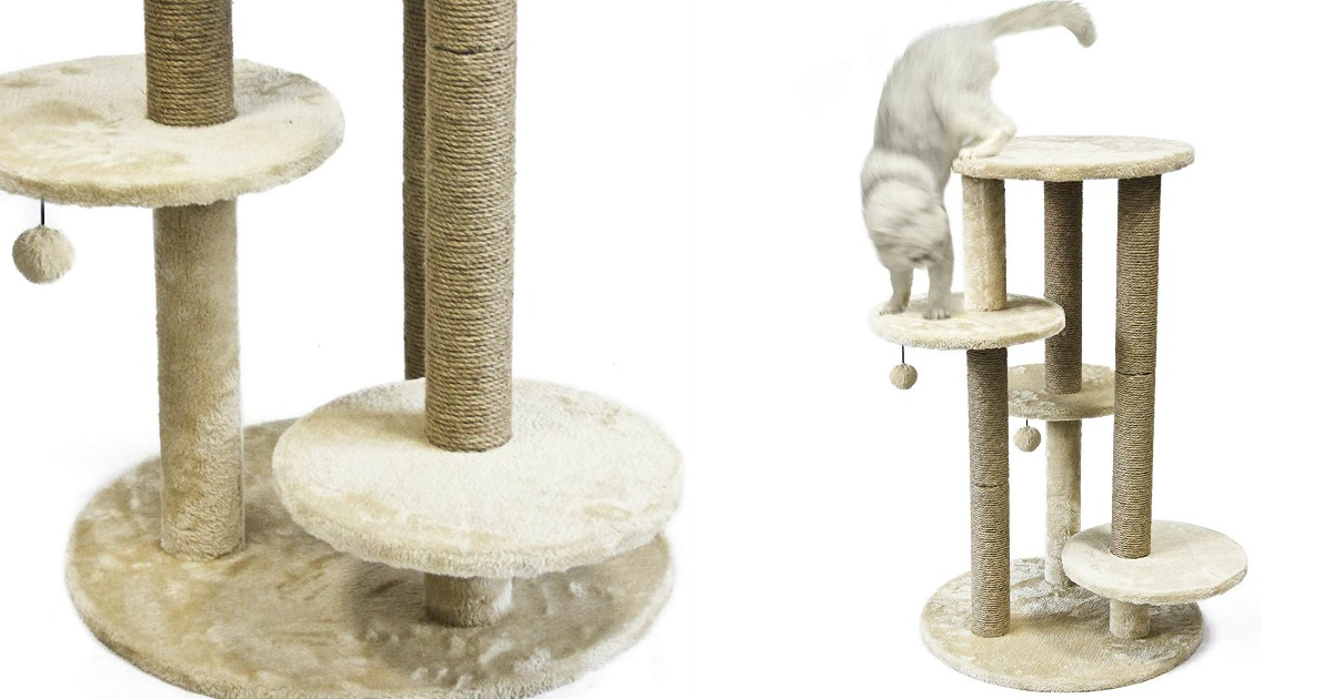 closeup on cat platform and cat playing on cat furniture