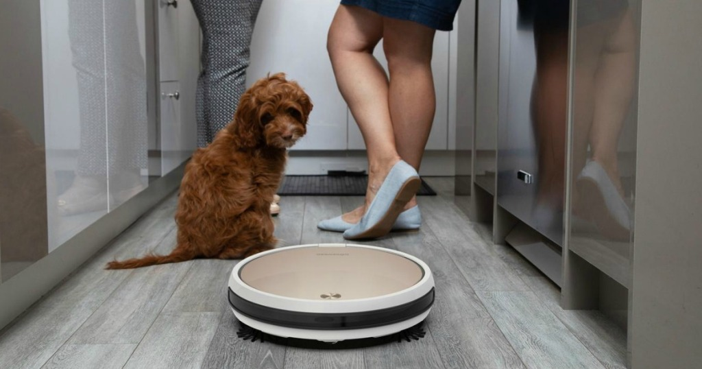 gold Bobsweep Pro Vacuum being used on hardware floor with dog and two adults in room