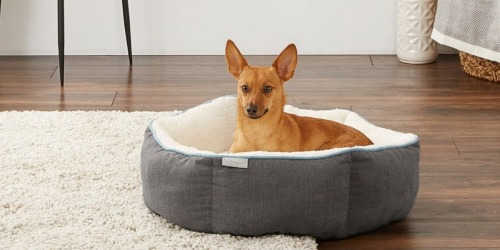 50% Off Pet Beds, Treats & More + Free Shipping at Chewy.com