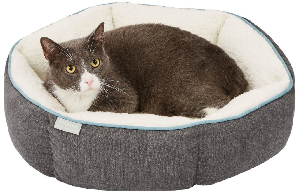 cat in sherpa lined gray dog bed