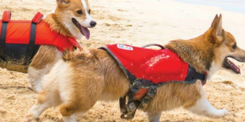 Highly Rated Dog Life Jacket as Low as $8.68 at Amazon (Regularly $55)