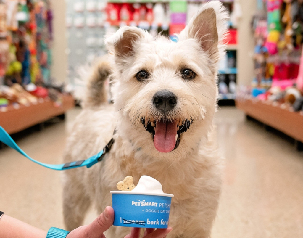 PetSmart dog-safe ice cream