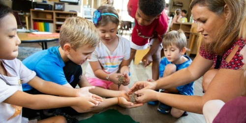 Teachers! Here's How to Get A Grant Toward A Classroom Pet (Even If You're Teaching Virtually)