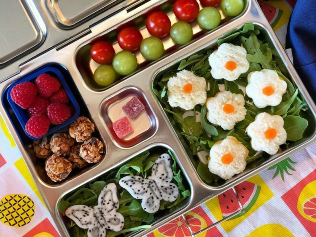 healthy lunch packed in PlanetBox Rover