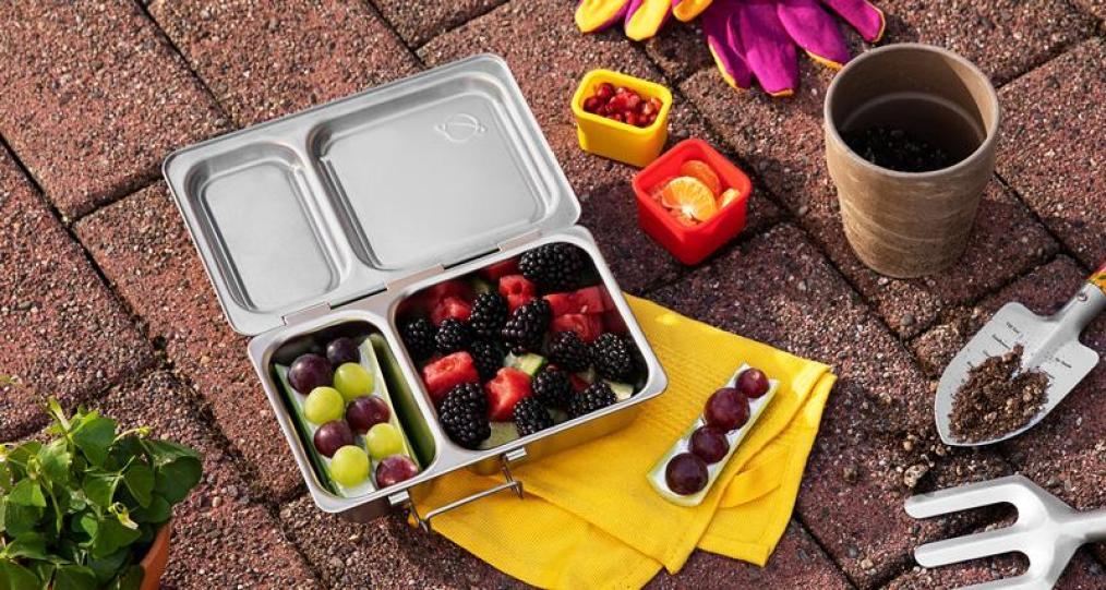 PlanetBox stainless steel Shuttle lunchbox filled with fruit