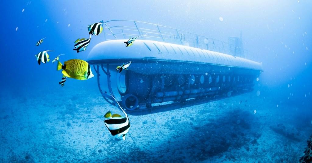 Underwater Submarine with fish