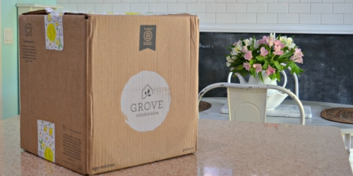 Get $70 Worth of Natural Cleaning Products From Grove Collaborative for Just $23.99 Shipped!