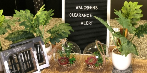 Up to 90% Off Faux Plants, Grilling Gifts & More at Walgreens