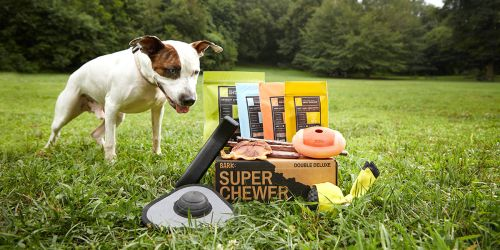 Get Your First Super Chewer BarkBox Double-Stuffed | Includes Dog Toys, Treats & More