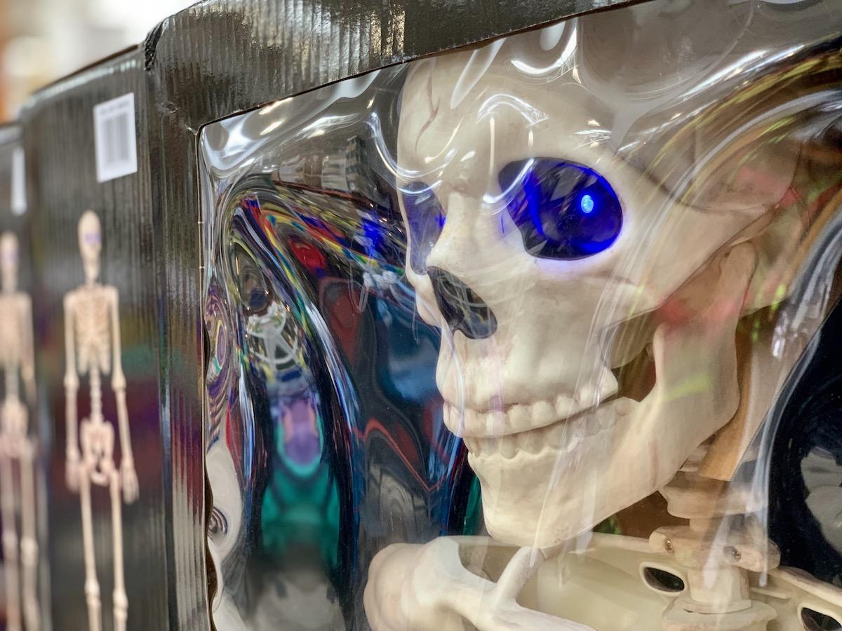 skeleton with glowing blue eyes in box