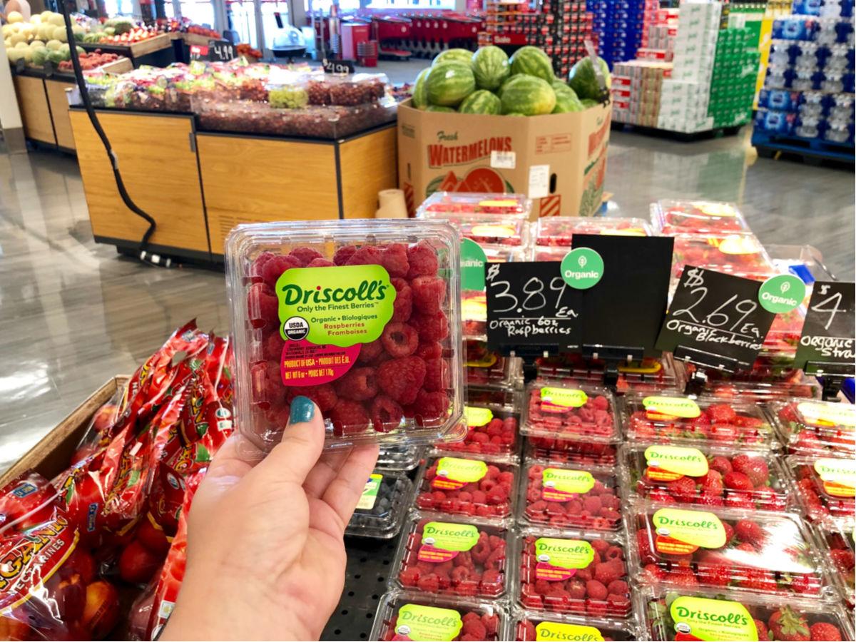 hand holding Driscott's Organic Raspberries at Target