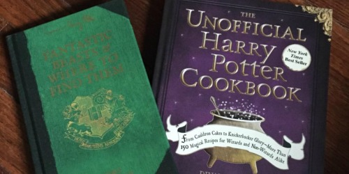The Unofficial Harry Potter Cookbook Only $9.45 (Regularly $20) – Awesome Reviews