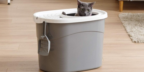 Top Entry Cat Litter Box & Scoop Only $13.49 at Amazon (Regularly $25)